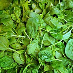Producto de temporada Enero Espinacas