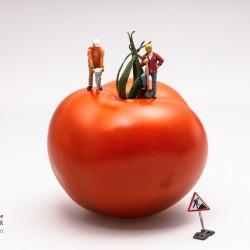 Según sea tu trabajo así debe ser tu alimentación saludable